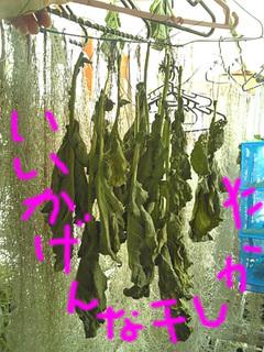 干し野菜5.jpg