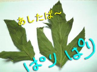 干し野菜8.jpg